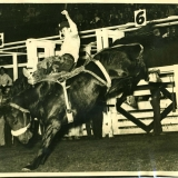 1949 Ted III in Rodeo